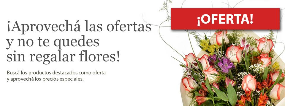 Portada Aida Flores