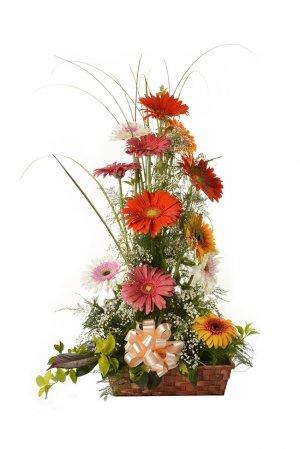 flores com uy:
